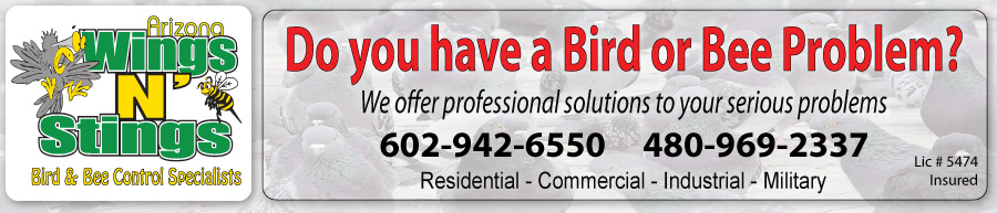 Banner Arizona Wings N Stings Bird & Bee Control Specialists